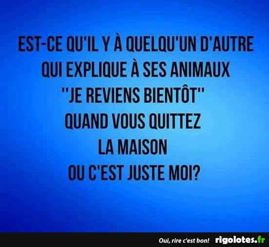 HUMOUR - Page 3 20180933