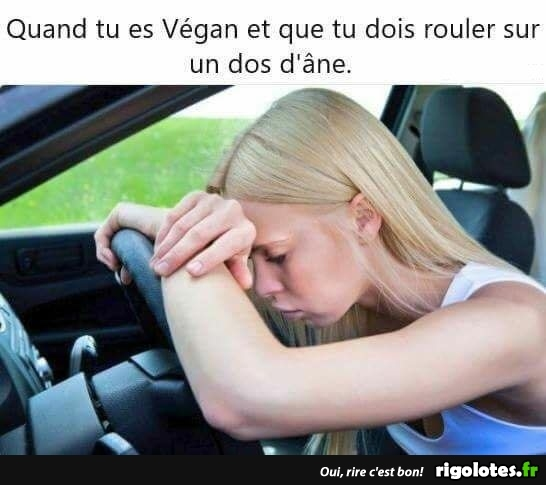 HUMOUR - Page 5 20180941