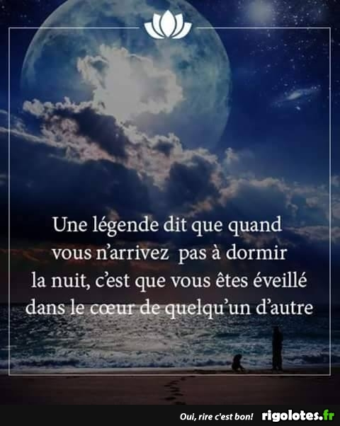 HUMOUR - Page 7 20180946
