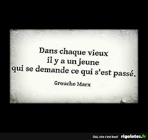 HUMOUR - Page 7 20180953