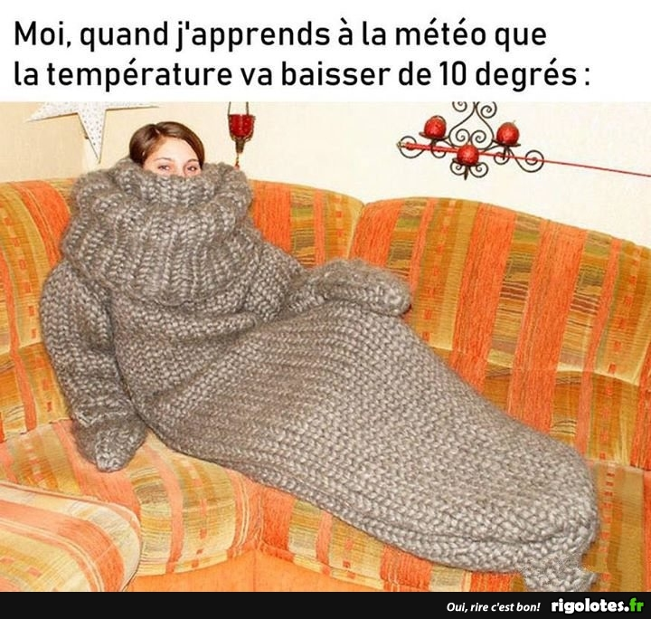 HUMOUR - Page 7 20180954