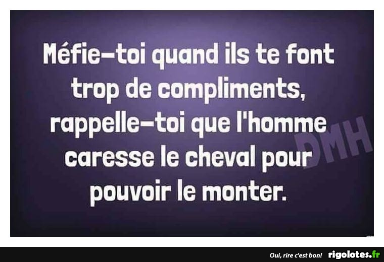 HUMOUR - Page 31 20180974