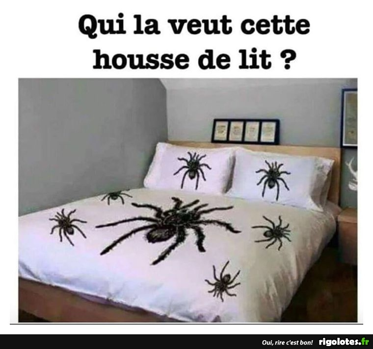 HUMOUR - Page 15 20181037