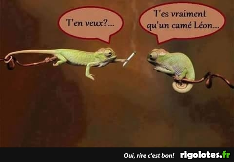 HUMOUR - Page 15 20181044