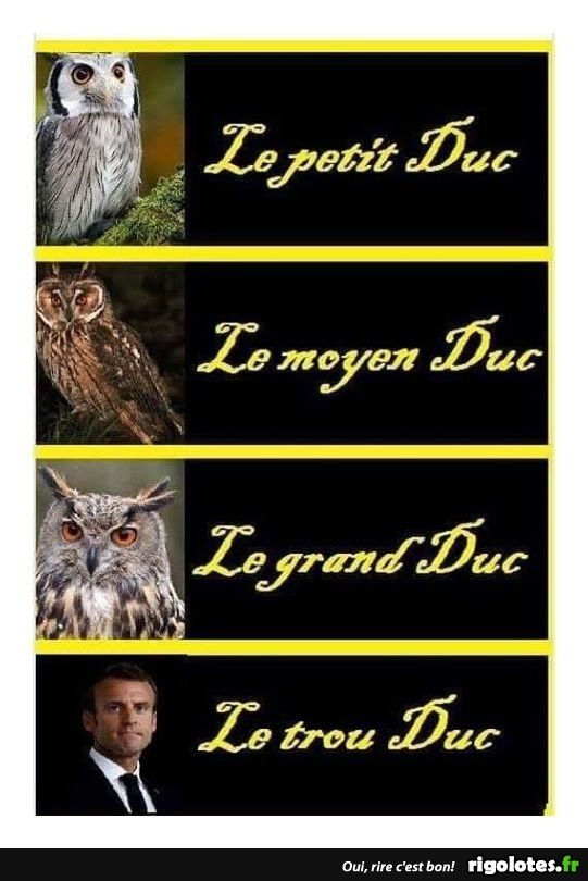 HUMOUR - Page 30 20181219