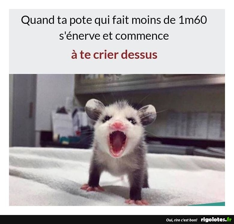 humour - Page 3 20181235