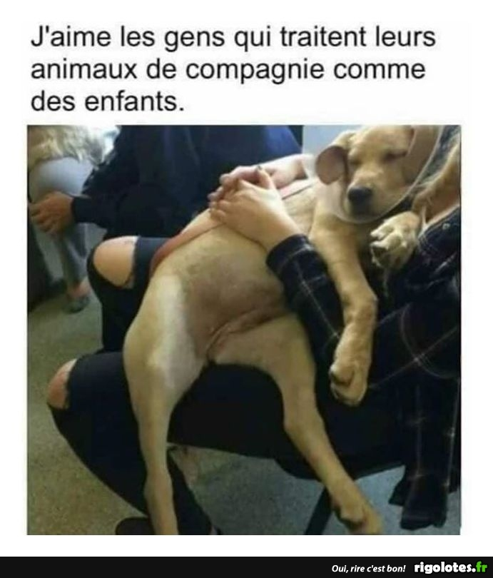 humour - Page 6 20181256