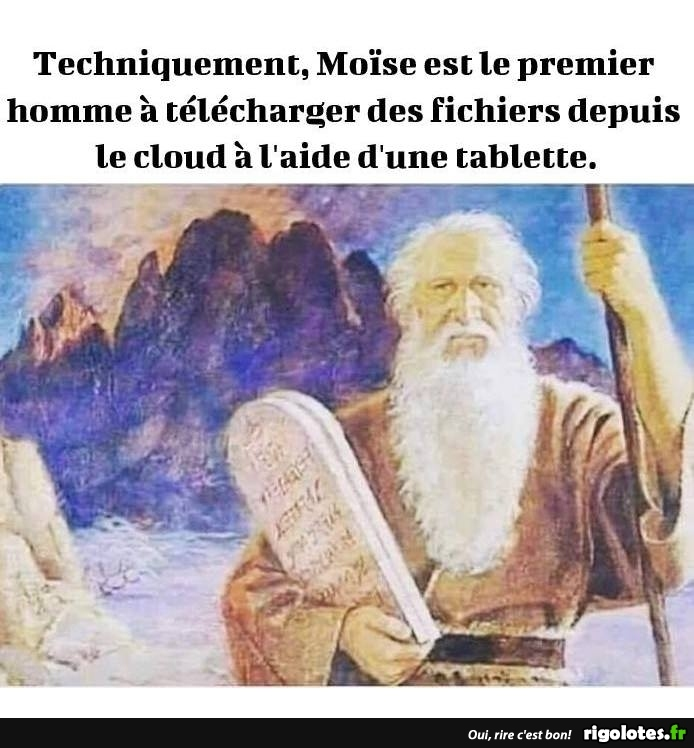humour du jour - Page 15 20190590