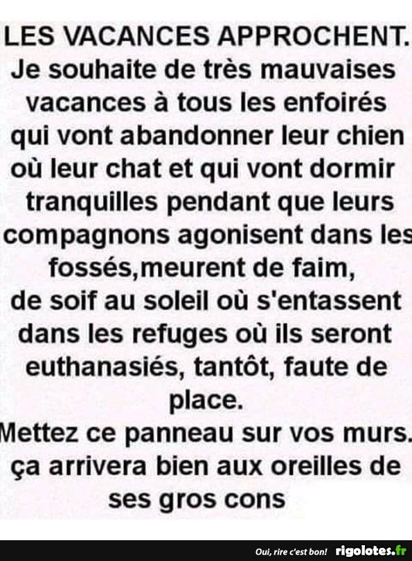 humour du jour - Page 28 20190808