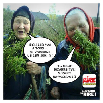 HUMOUR - Page 39 Media_15