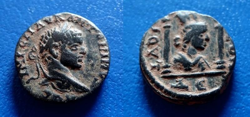 mes 2 nouveaux Elagabale... J´adore Dsc08211