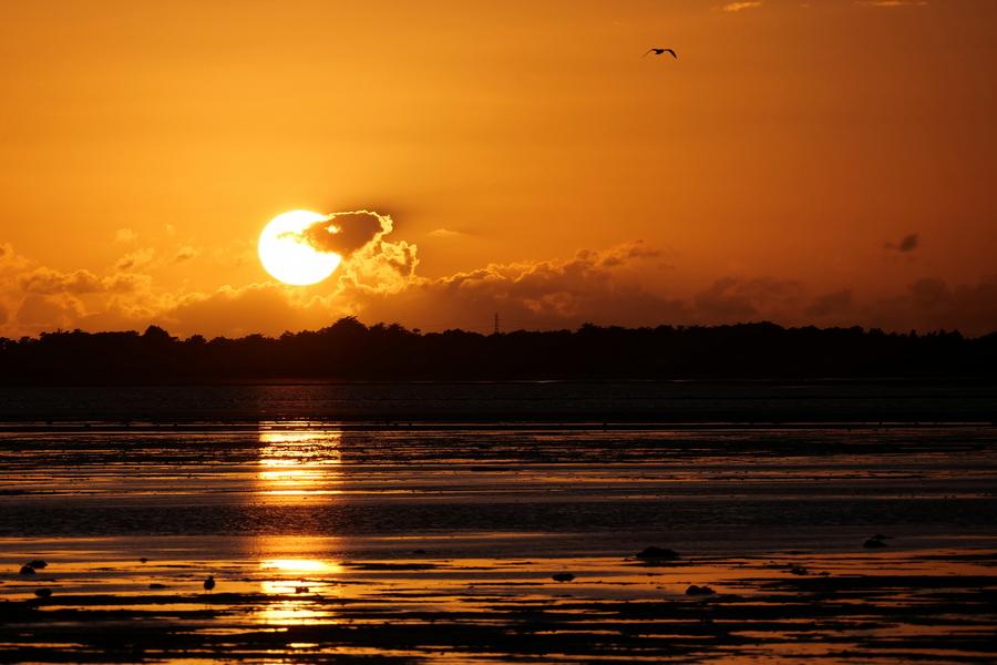 Coucher de soleil automnale sur le Gois P1565710