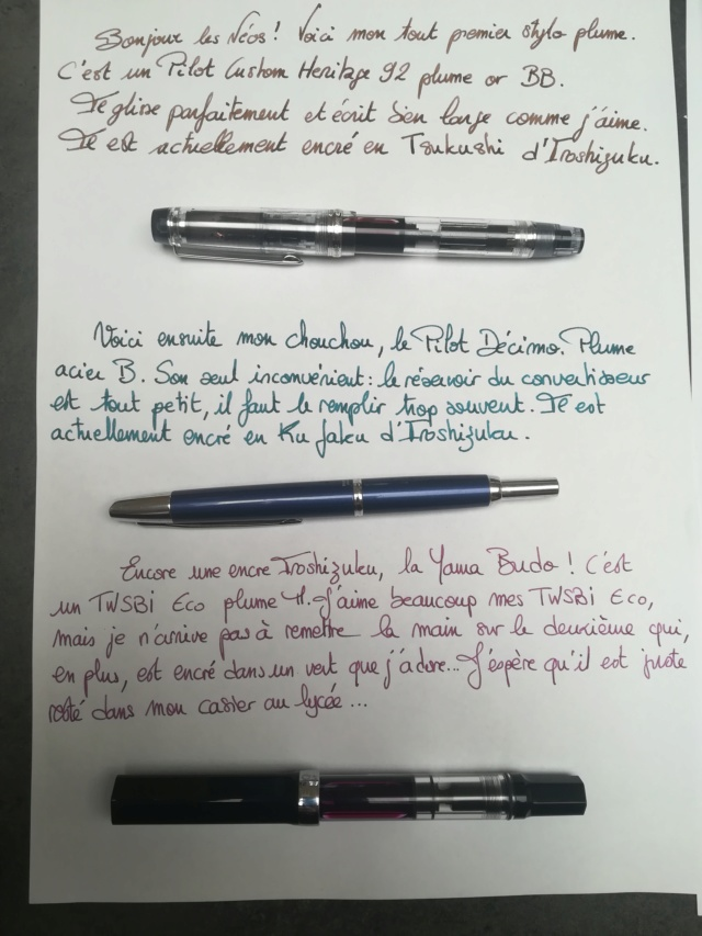 Stylos plume - Page 2 Img_2113