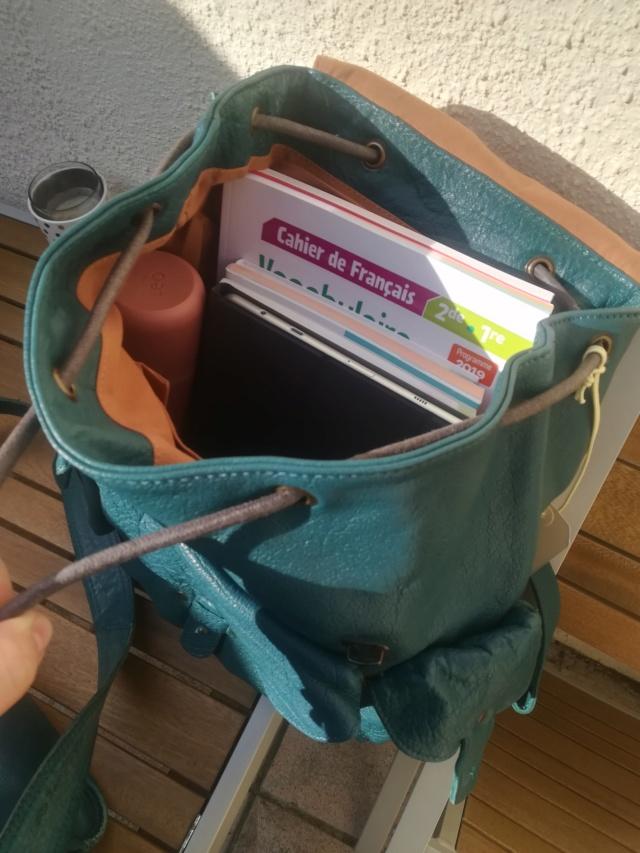 Pour quel sac/cartable/besace/gibecière avez-vous opté pour trimballer votre bazar ? - Page 24 Img_2125
