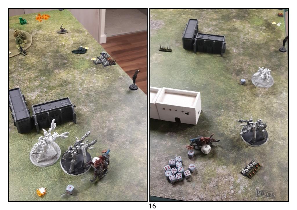 Eldar vs Tyrannides 4000pts Eldar_31