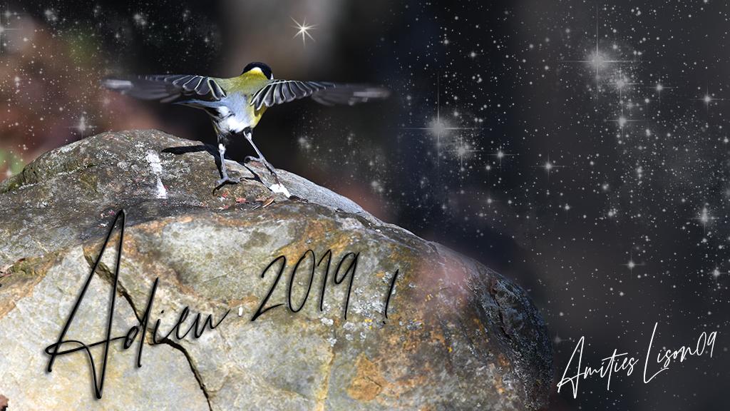 Adieu 2019 ! dans Actualité locale adieu210
