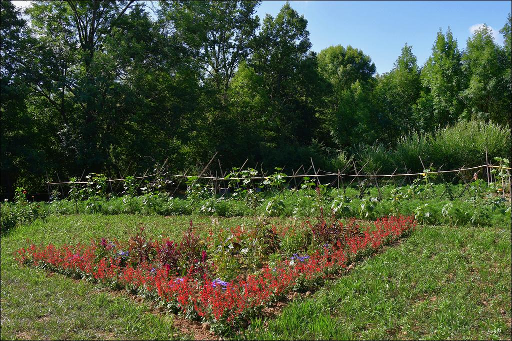 Jardin extraordinaire la suite  Lmb_0114