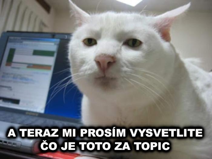 Mačka Uo_je_10