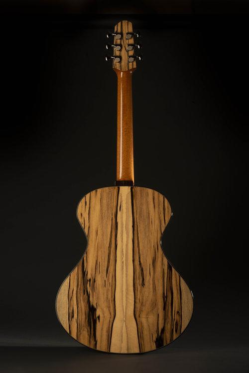 Skytop guitars August11