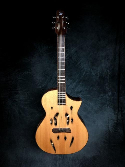 Skytop guitars Sa10