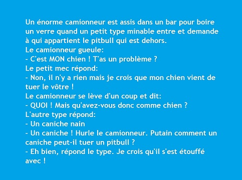 Topicaflood : trolls, viendez HS ! - Page 5 Blague13