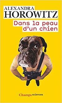 """Boutons """"J'AIME"""" & """"J'AIME PAS""""- Votez, exprimez vous. - Page 4 Dans-l10"""