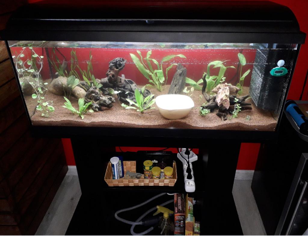 Aquarium 130L Captur12
