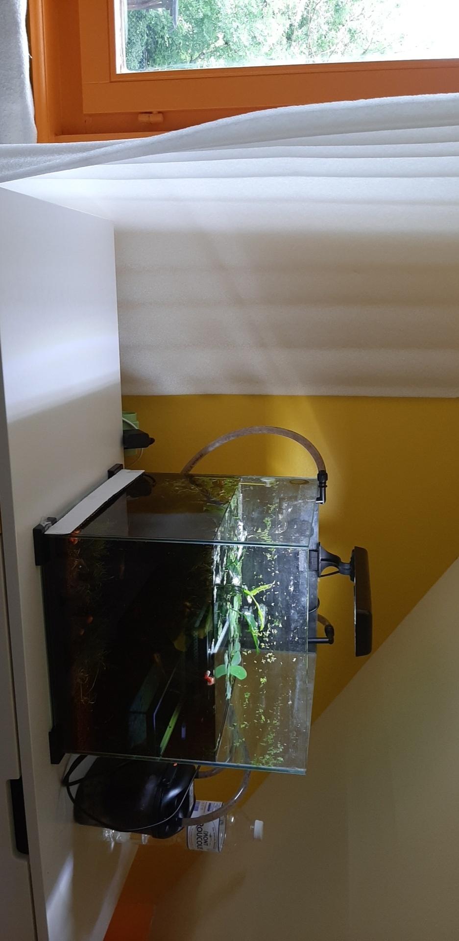 [RÉSOLU] Déplacer un aquarium de 30 litres Snapch62