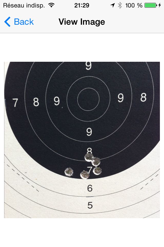 Usage de munitions manufacturées dans un PEDERSOLI Springfield ? 45-70_12