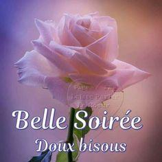 Petit bonjour - bonsoir en passant - Page 10 5cde8c11