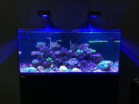 About AquaticArts Thumbn10