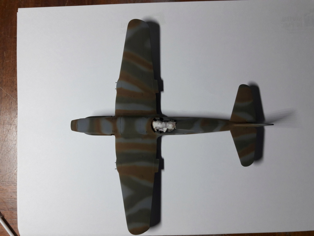 caudron cr714 RSModels 1/48 (montage) - Page 3 Img_2097