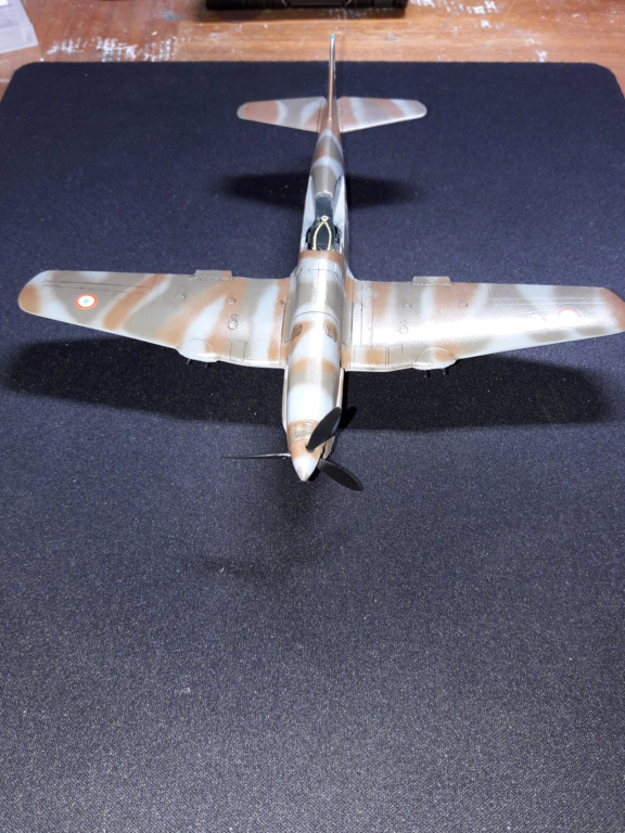 caudron cr714 RSModels 1/48 (montage) - Page 4 Img_2118