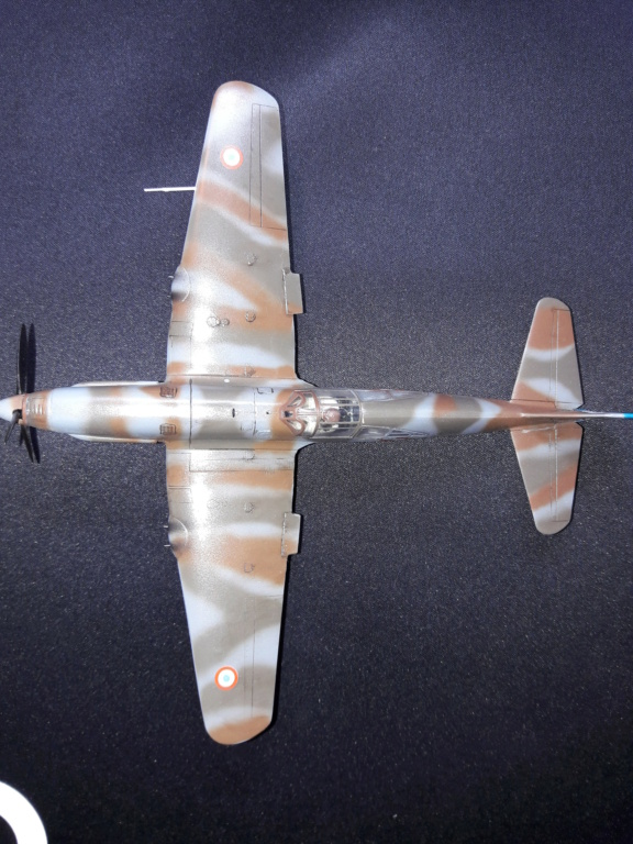 caudron cr714 RSModels 1/48 (montage) - Page 4 Img_2126