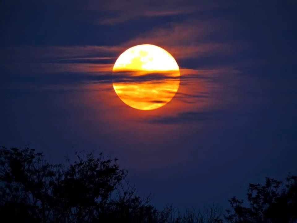 As 9 Melhores Fotos da Super Lua Cheia Entre_93
