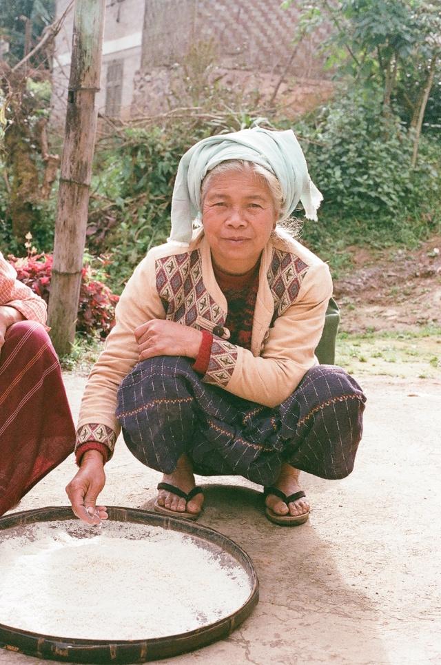 Présentation! Nouvelle KLE500 Birman10