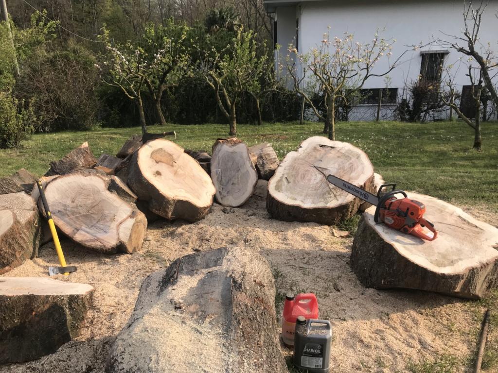 Taglio tronchi a terra di grosso diametro - Pagina 2 50d6f110