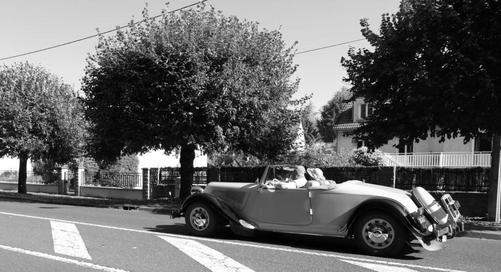 Bouchon de Joigny P1030710
