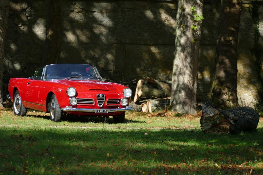 l'Art Automobile - château de Groussay - Montfort l'Amaury  P1030816