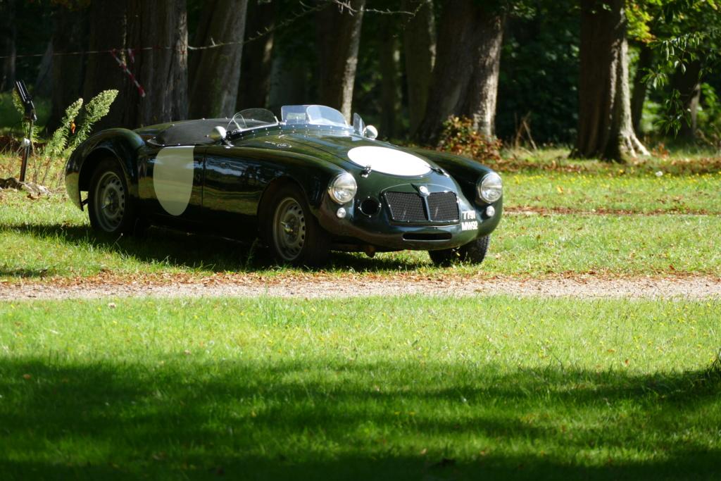 l'Art Automobile - château de Groussay - Montfort l'Amaury  P1030823