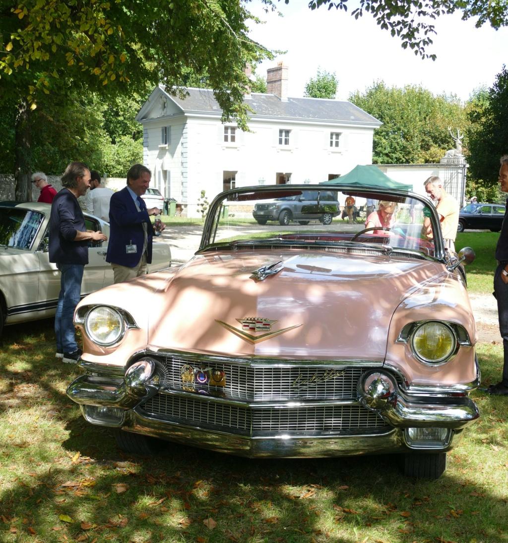 l'Art Automobile - château de Groussay - Montfort l'Amaury  P1040029
