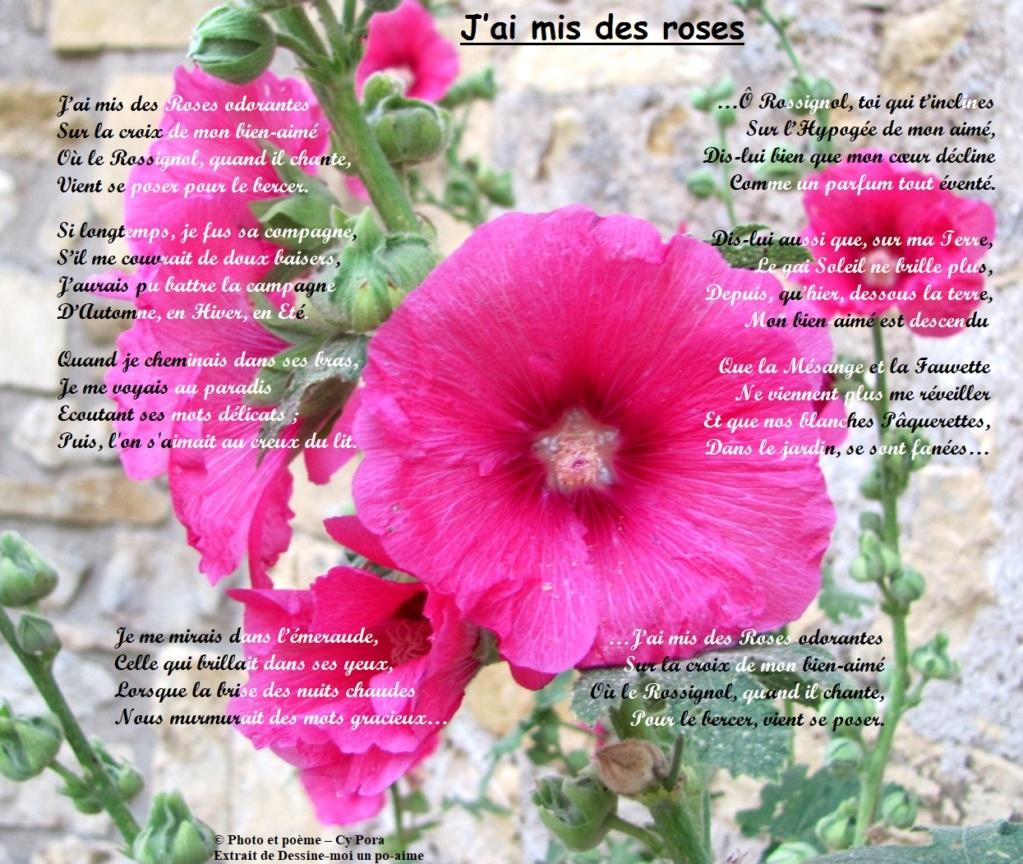 J'ai mis des roses J_ai_m10
