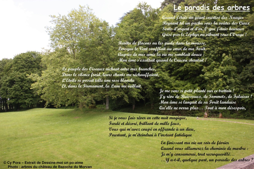 Le paradis des arbres Le_par10