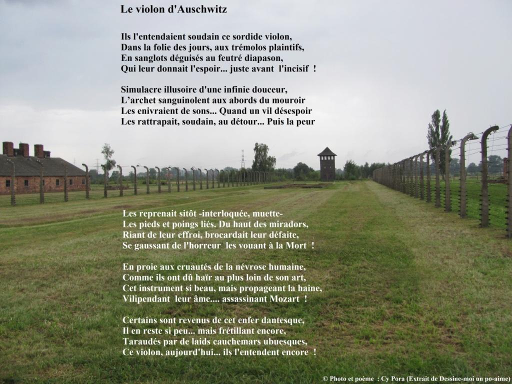 Le violon d'Auschwitz Le_vio10