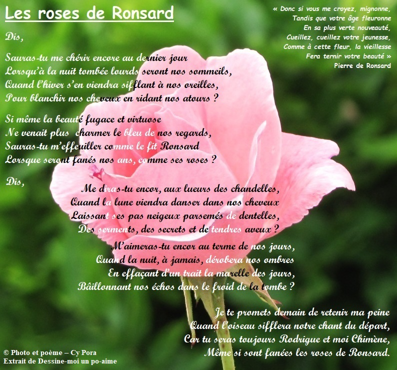 Les roses de Ronsard Les_ro10