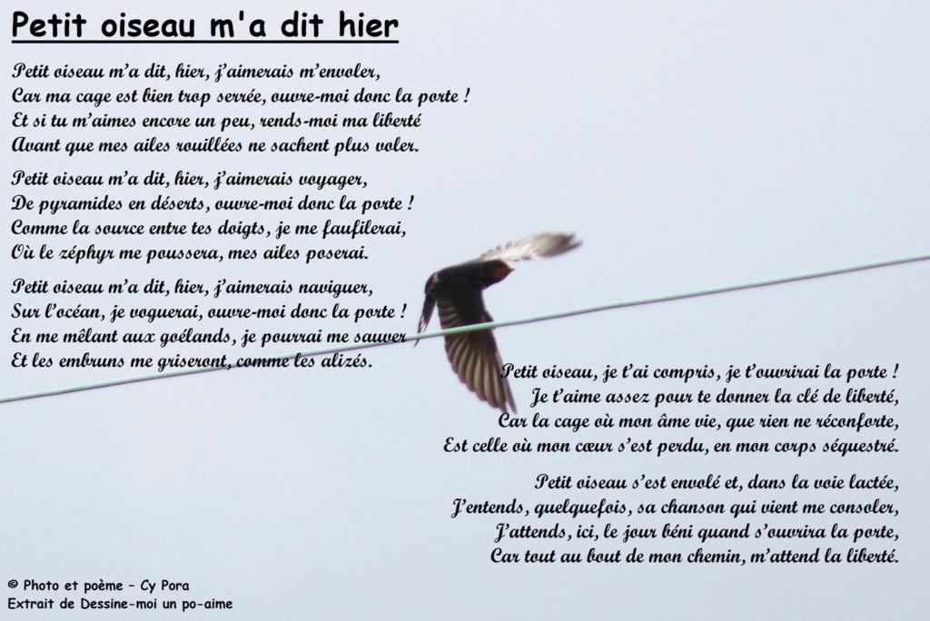 Petit oiseau m'a dit Petit_12