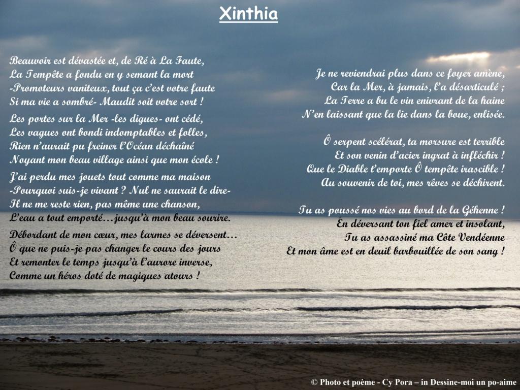 Xinthia Xintia10