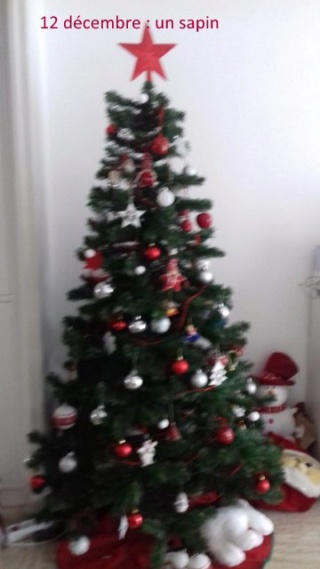 MF prépare Noël dans le Sud.... maj le 25/12 12_dzo11