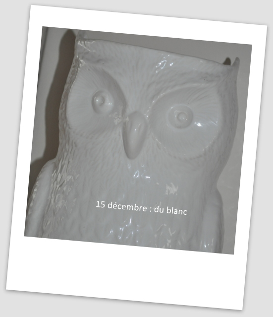 15 décembre 15_dzo10