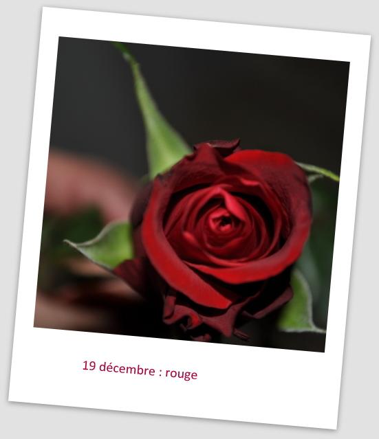 19 décembre 19_dzo10